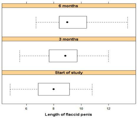 ファローサンフォルテによる非勃起時のペニスの長さの変化